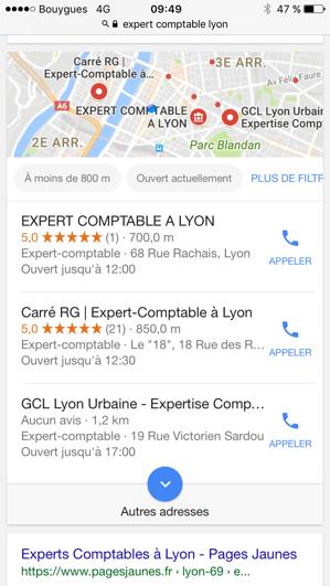 Expert comptable lyon.png